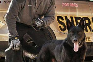 Racine-Sheriff-with-black-K9
